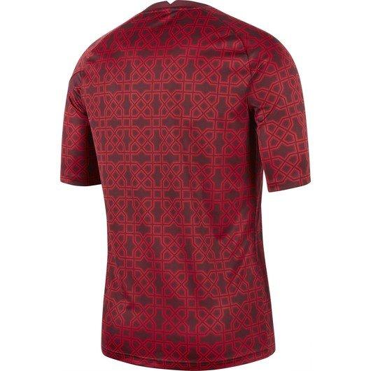Nike Türkiye 2020-2021 Short-Sleeve Erkek Forma