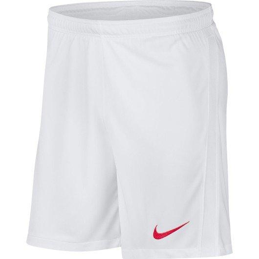Nike Türkiye 2020-2021 İç Saha Erkek Şort